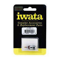 IWATA NEO N020 1 SET VALVOLA ARIA COMPLETA